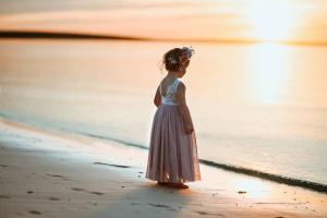 French Isabel Dusty Rose Lace Back Dress
