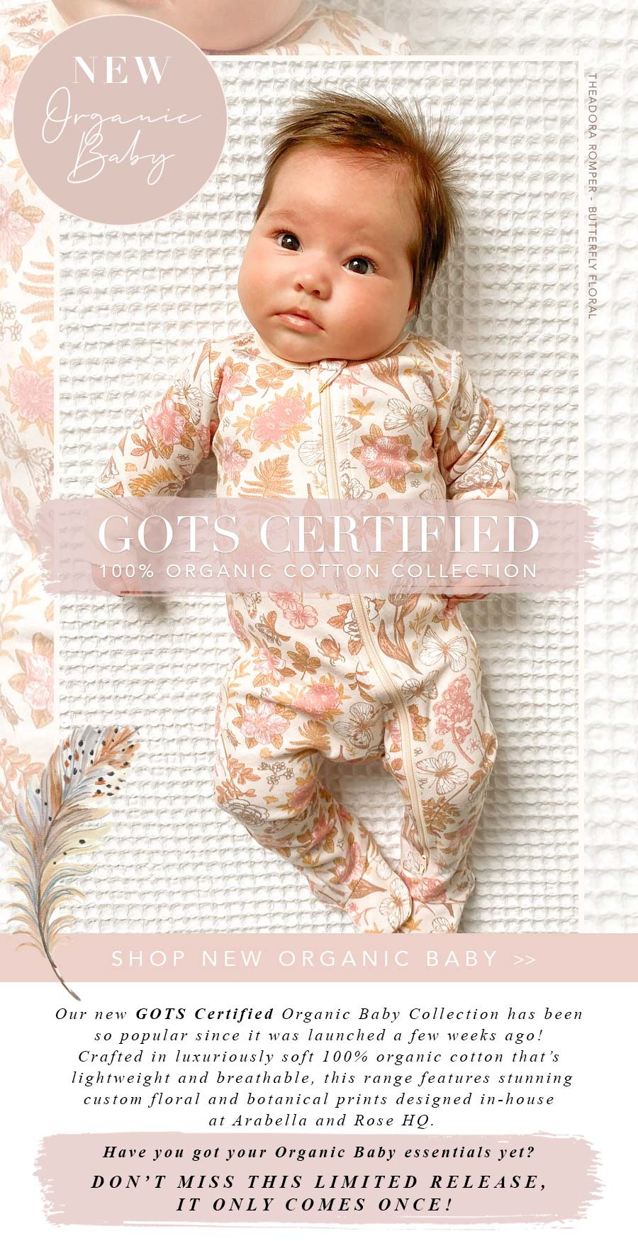 Organic Baby Feature Image