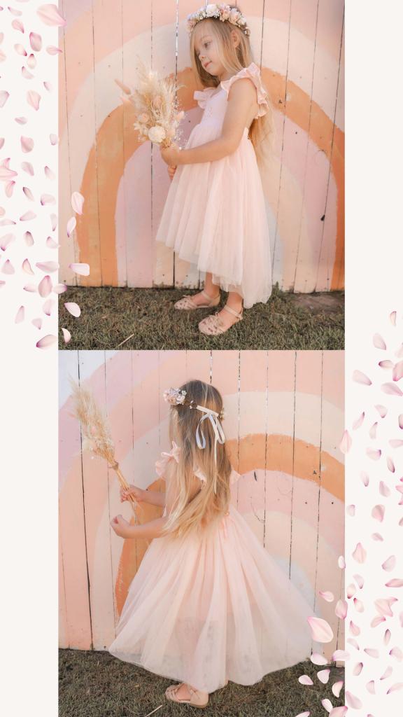 Fairy Garden Blog Image